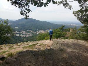 Waldbaden Schweiz mit Reto Frank