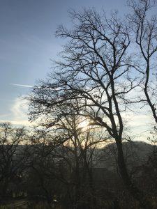 Waldbaden in Franken mit Sigrid Donath