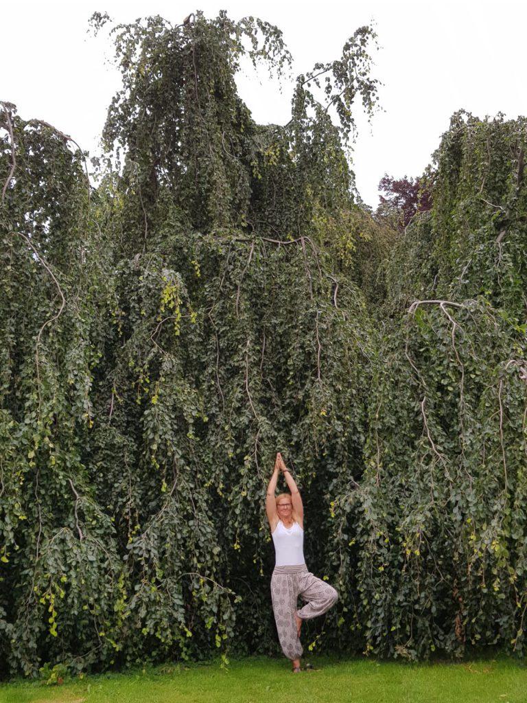 Waldbaden-Alsfeld zur Prävention mit Susanne Diehl